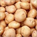 Buy Potatoes