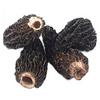 Buy Dried Morels