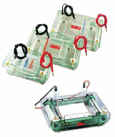 Buy Horizontal Electrophoresis