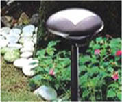 Buy Solar Garden Light