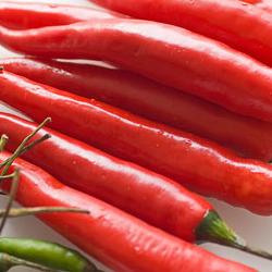 Buy Hot Pepper (Chilli)