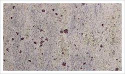 Buy Kashmir White Granite-Slab