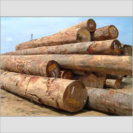 Buy Wood logs