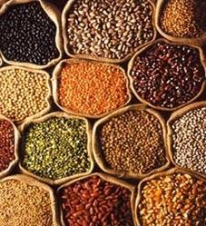 Buy Shri Manikeshwari Pulses