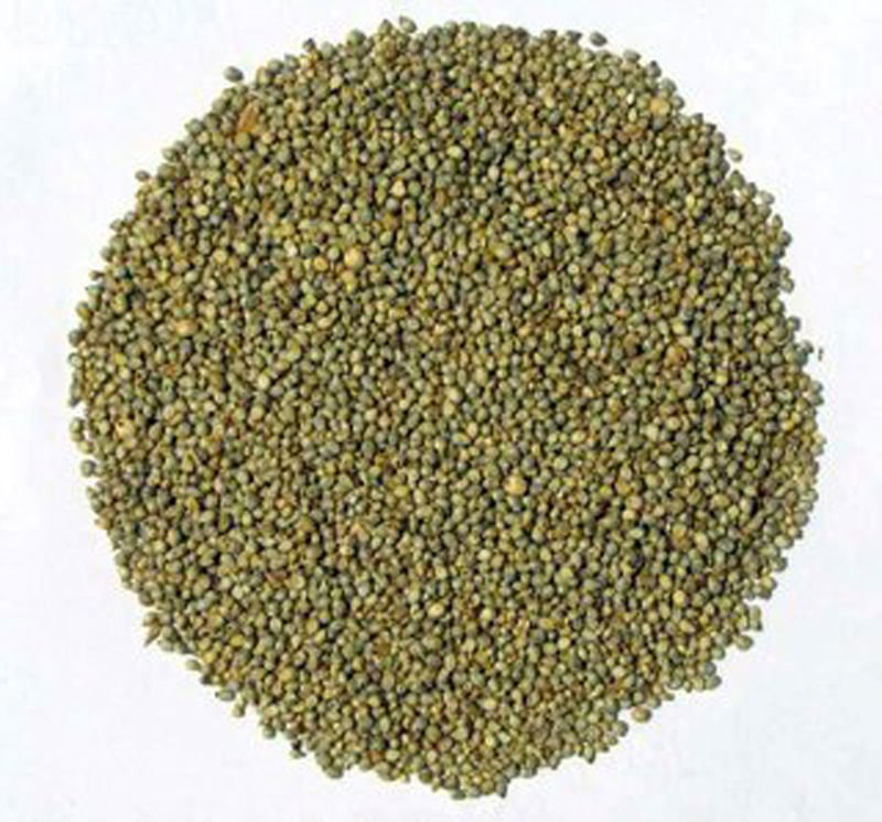 Buy Good Indian millets