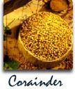 Buy Whole Corainder Seed