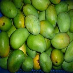 Buy Raw mango