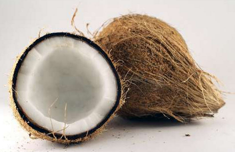 Buy Coconut