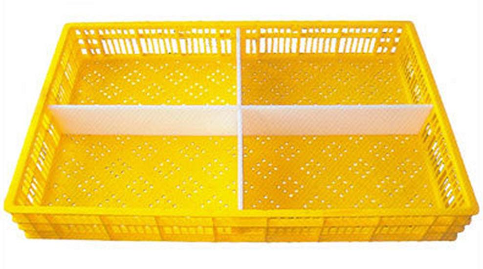 Buy Chick Transport Box