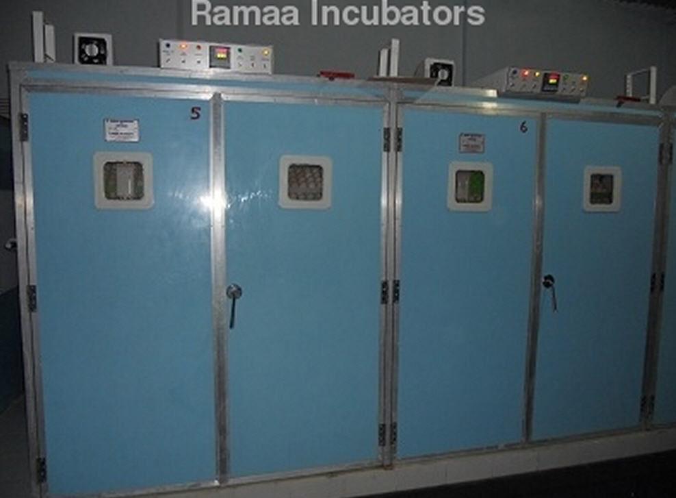 Buy Poultry Double Setter Incubators