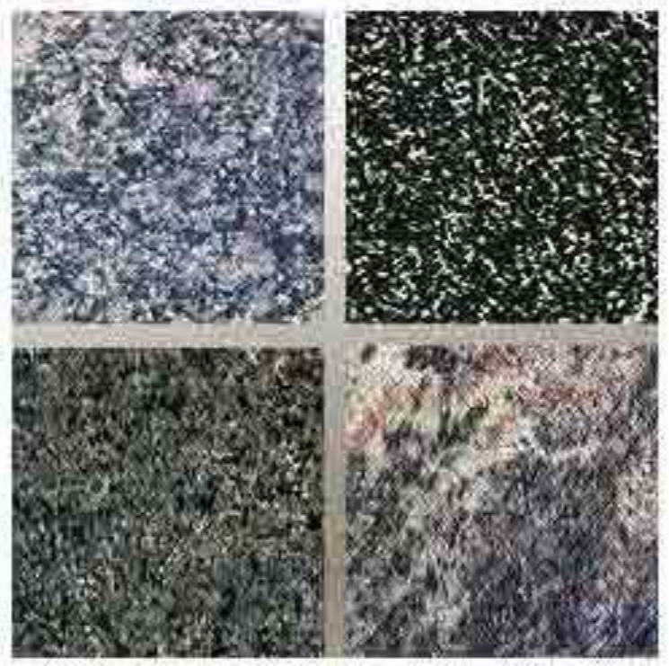 Buy Green Granite