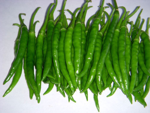 Buy Hot Pepper Seeds