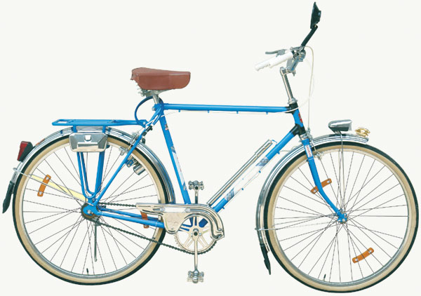 Bicycle Model EE-CB-030