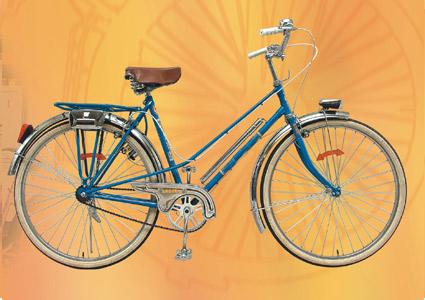 Buy Bicycle Model EE-CB-031