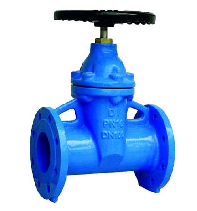 Buy Cast Iron Valve