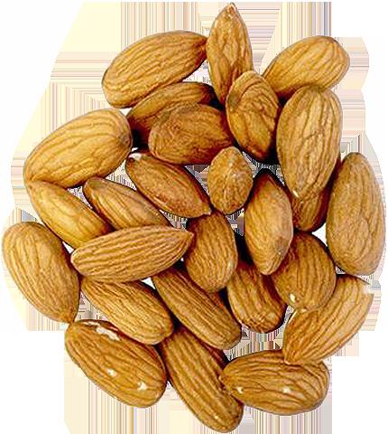Buy Almond