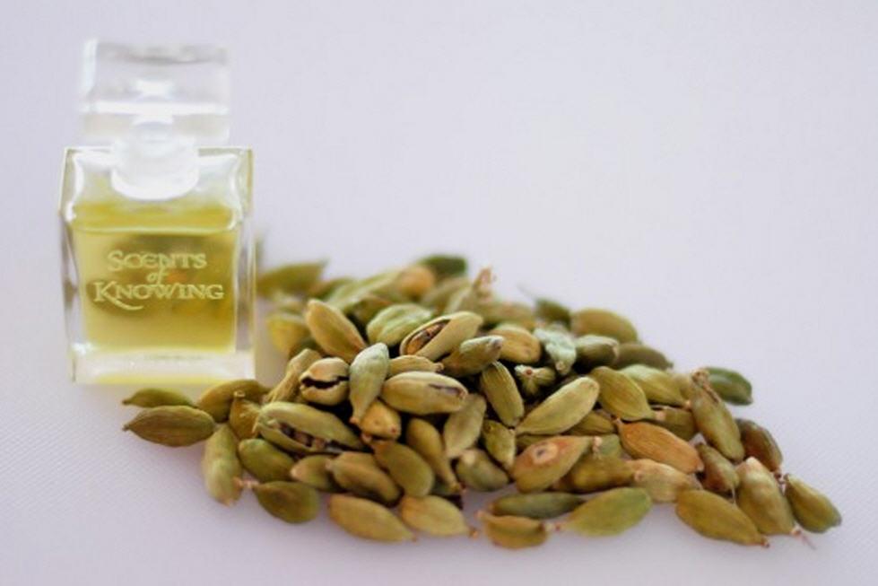 Buy Cardamom Oil