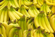 Buy Fresh Banana