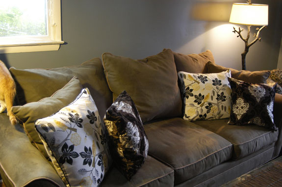 Cushions For Sofas