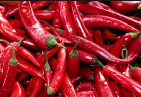 Buy Red Chilli