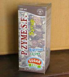 Buy P-Zyme SF Syrup (Sugar Free)