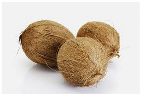 Buy Fresh Coconut