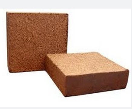 Buy Coco Peat Block