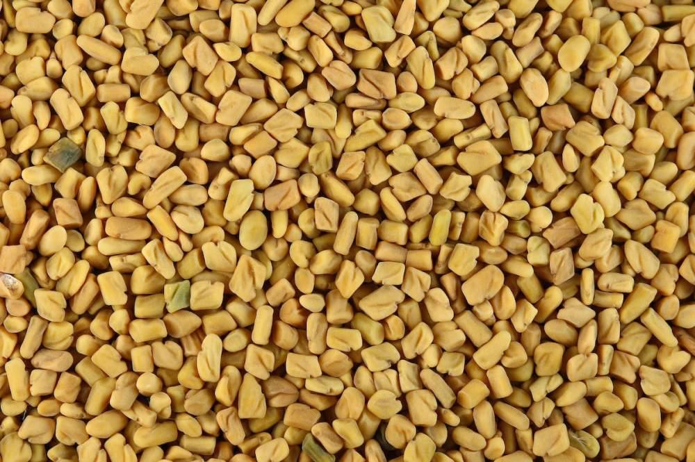 Buy Fenugreek Seeds