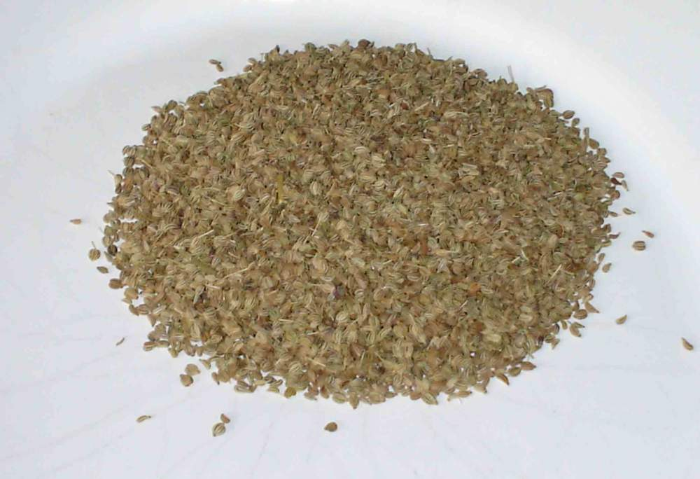 Buy Carom Seeds