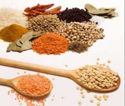 Buy Spice Oils