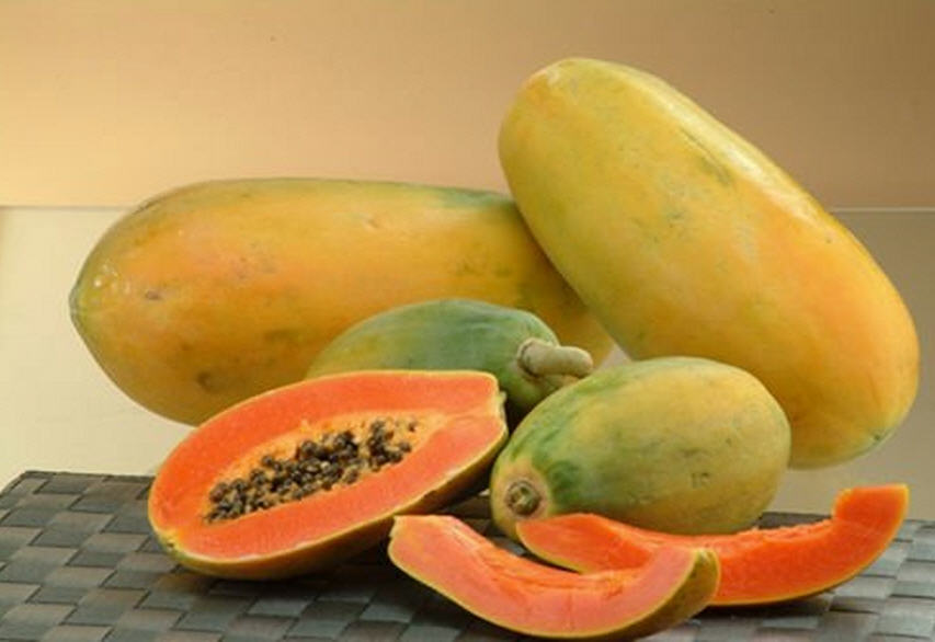 Buy Papaya Pulp