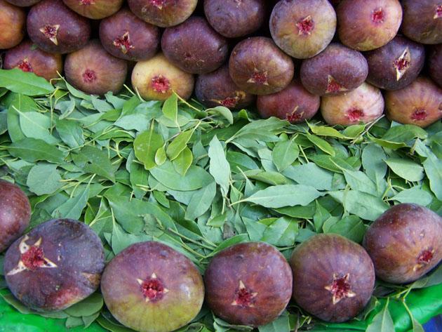 Buy Figs (Anjeer)