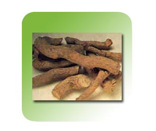 Buy Serpintine Wood