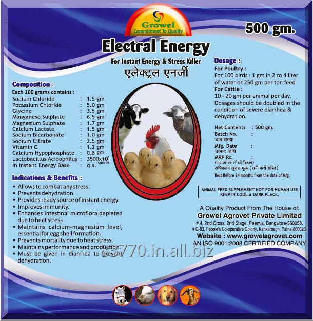 Buy Electrolyte with Minerals & Vitamins for Poultry & Cattle.
