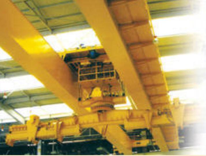 Buy Revolving Hoist On Cranes