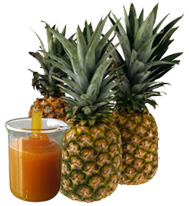 Buy Pineapple Pulp