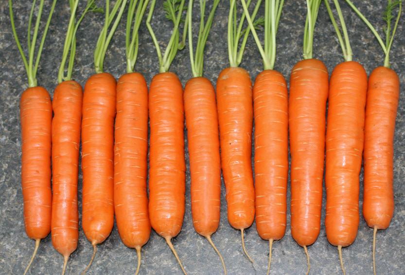Buy Carrots