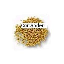 Buy Coriander Seeds