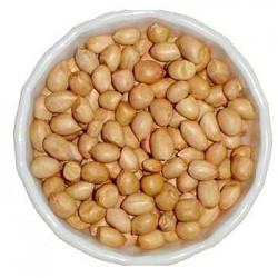 Buy Peanut (JAVA)