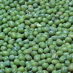 Buy Green Mung Beans