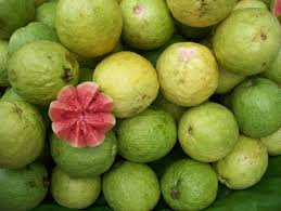 Buy Guava