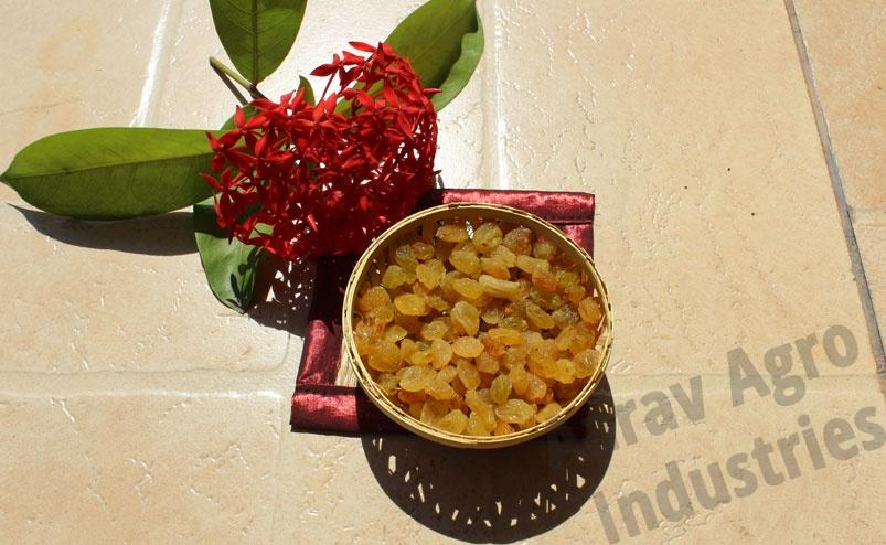 Buy Golden Raisins - Aarav Agro Industries