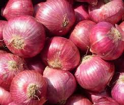Buy RED ONION