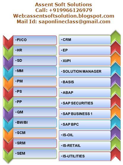 Buy Sap online class