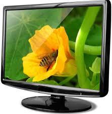 Buy Lcd Monitor