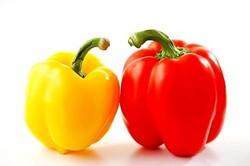 Buy Organic Vegetables