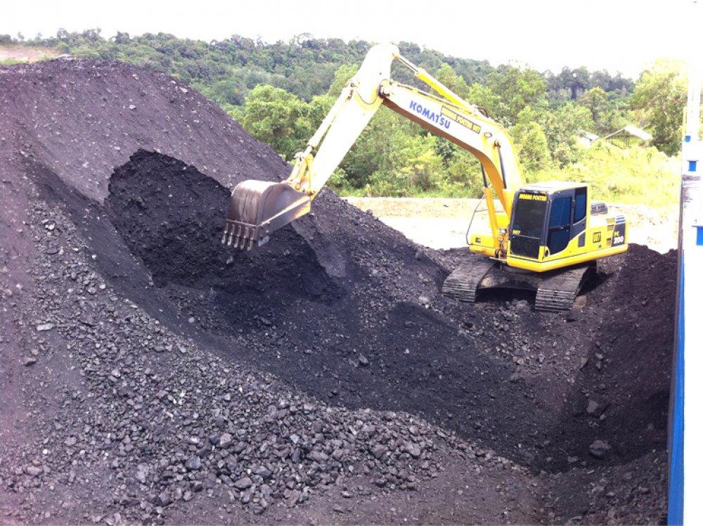 Buy Coal