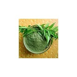 Buy Neem Leaves Powder