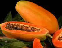Buy Papaya Powder