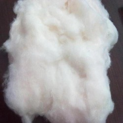Buy Cotton Fiber